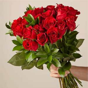24 Red Roses Bouquet no vase